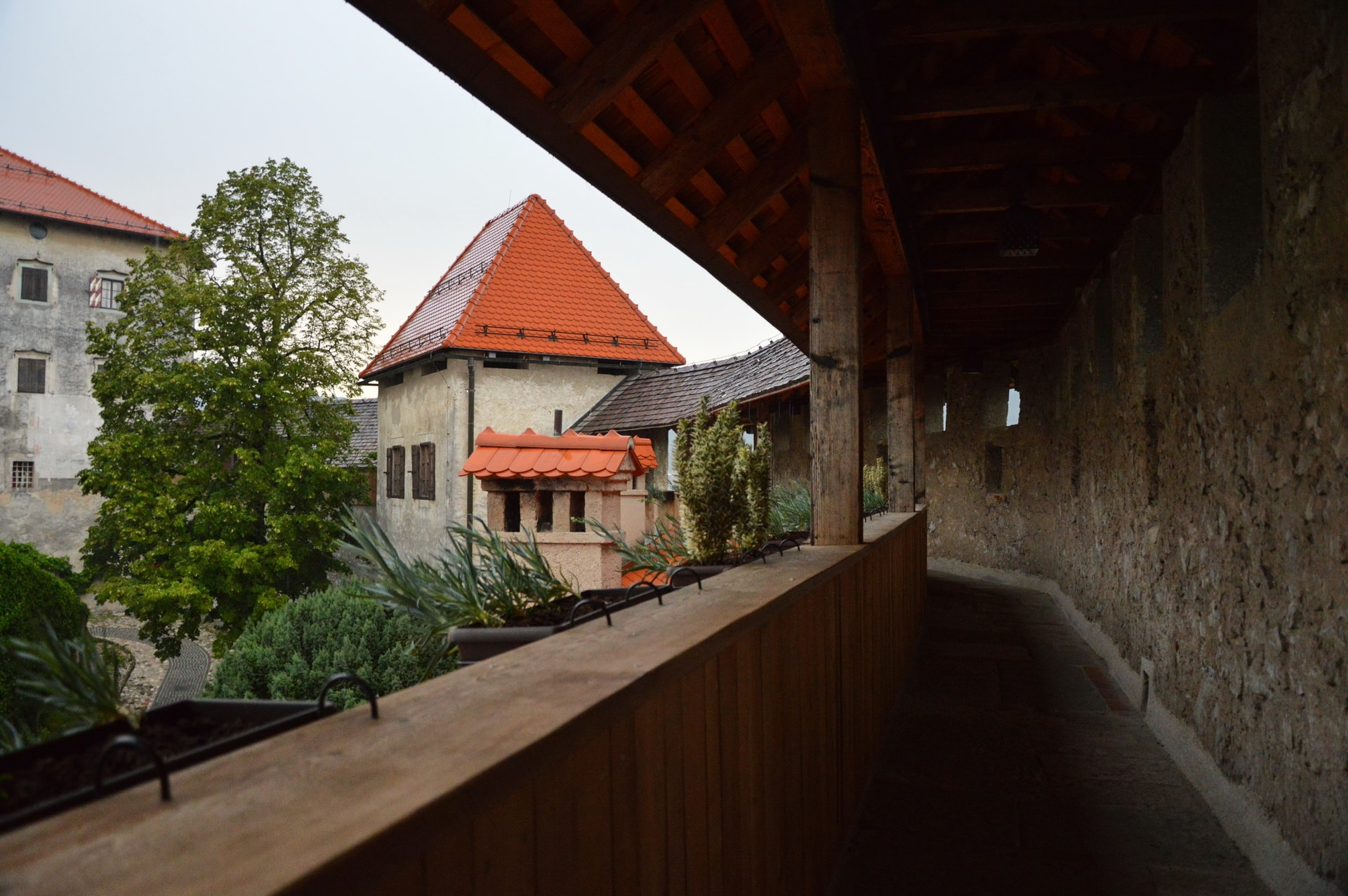 On the walls of the Bled Castle