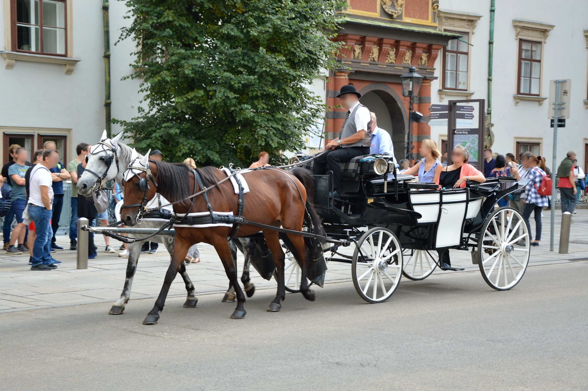 Horse-drawn carriage rides are a great way to explore and feel the city